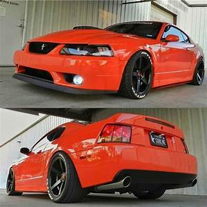 32 best 02 Mustang images on Pinterest | Mustang cobra, Snakes and New edge mustang