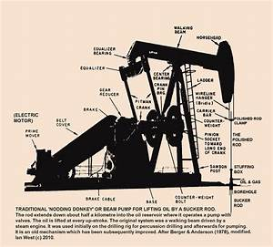Oil Pump  Oil Pump Well