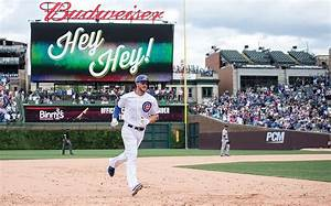 This Cubs photo was a home run in more ways than one ...