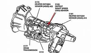 2000 Ford Explorer O2 Sensor Location  Wiring Diagram