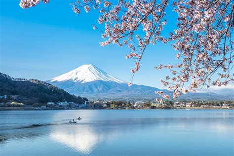 places   cherry blossom  japan