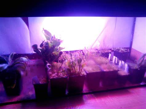 led growing lights 10 diy led grow lights for growing plants indoors home