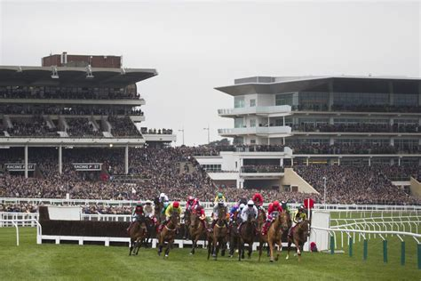 cheltenham festival horse racing away tipsters handicap runners packed ultima chase temps stands winner tout race