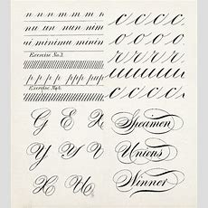20 + Calligraphy Alphabet Specimens Besotted