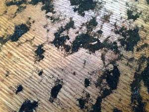 how to remove residue from under carpet from h w floors With goo gone on wood floors