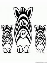 Zebra Coloring Pages Stripes Without Printable Related sketch template