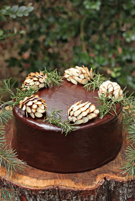 chocolate pine cones  nuts blog