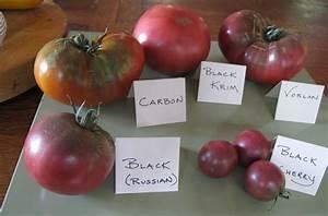 Heirloom Tomatoes: Pictures of Earliest Varieties to ...