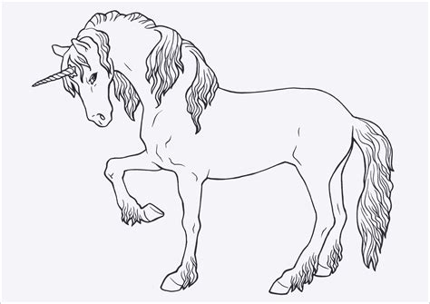 malvorlagen pferde gratis image ausmalbilder ideen