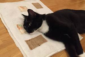 Verkleidung Für Katzen : diy knisterdecke f r katzen ~ Frokenaadalensverden.com Haus und Dekorationen