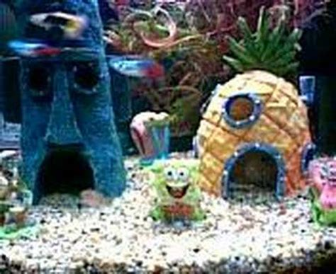 spongebob aquarium decor philippines spongebob squarepants tank
