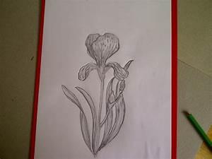 Ideen Zum Zeichnen : ideen zum zeichnen mit bleistift f r anf nger ideen zum zeichnen mit drawing ideas art ~ Yasmunasinghe.com Haus und Dekorationen