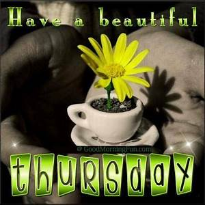 Good Morning Thursday Quotes and Wishes - Good Morning Fun