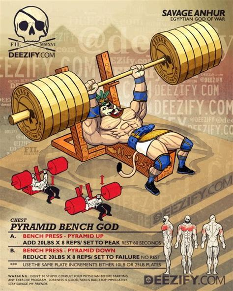 Benching Pyramid by 25 Best Ideas About Bench Press On Pinterest Bench