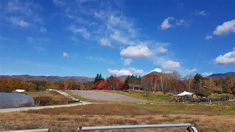 Autumn In Japan Ikebukuro Diary