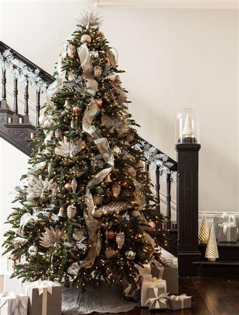 fir christmas tree ideas best 25 noble fir tree ideas on fraser fir balsam fir tree and balsam