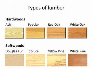 Types Of Softwood www pixshark com - Images Galleries