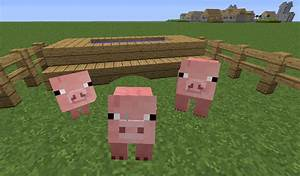 Minecraft Baby Pig Related Keywords & Suggestions ...