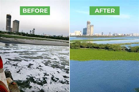 Frothy River Yamuna Now Looks Much Cleaner Due to Lockdown