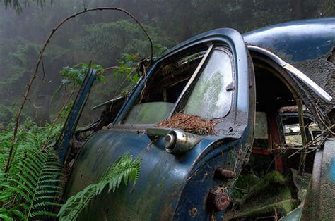 Traffic Jam Stuck In Belgian Forest For 70 Years