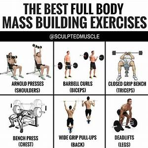 The Best Full Body Mass Building Exercises By  Sculptedmuscle
