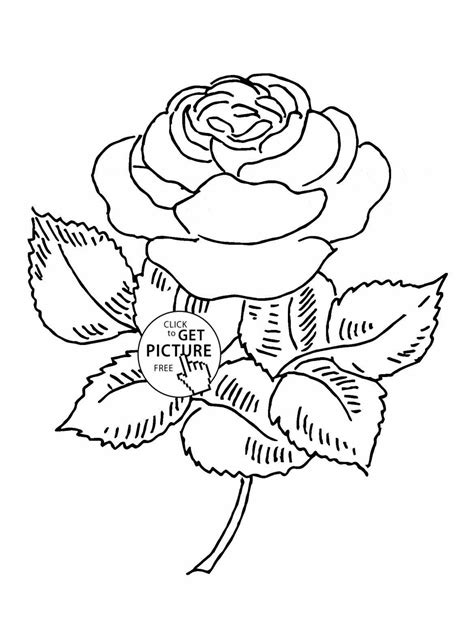 You Can Print Coloring Pages Page Image Clipart Images