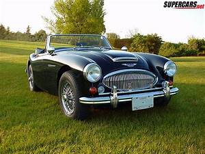 1000  Images About Austin Healey On Pinterest