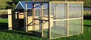 Construire Enclos Pour Chats : poulailler avec enclos int gr lequel choisir jardingue ~ Melissatoandfro.com Idées de Décoration