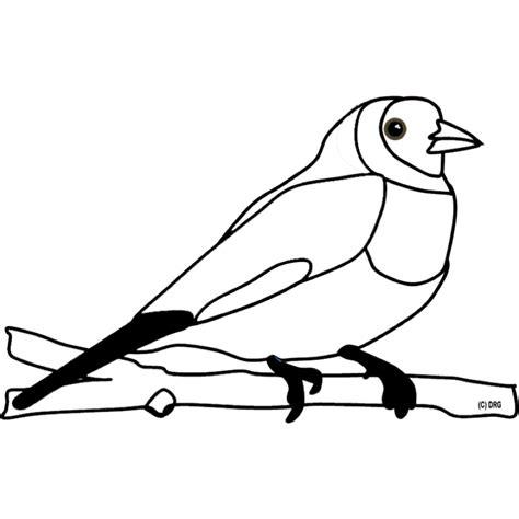 ausmalbild tiere ausmalbild vogel kostenlos ausdrucken