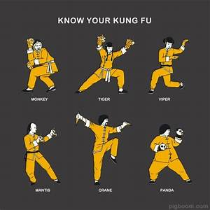 Shaolin Kung Fu Styles Pictures to Pin on Pinterest ...