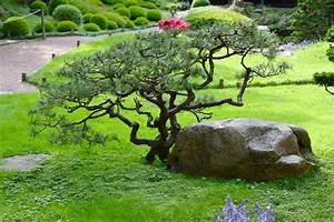 comment faire un jardin japonais miniature 3 les deux With comment faire un jardin japonais miniature