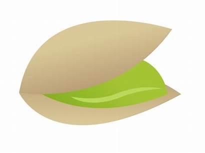 Pistachio Clipart Pistachios Clip Nuts Cliparts Clipground