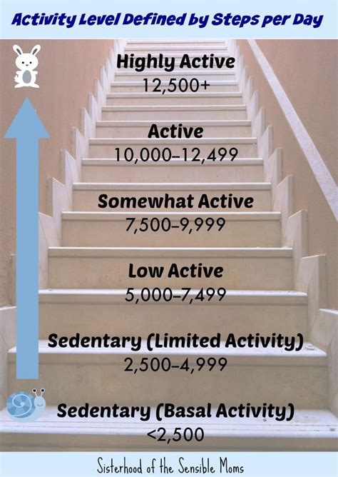 Per Day by The Truth About 10000 Steps And Your Health 10000 Steps