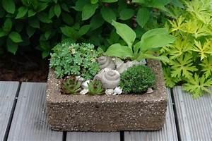 Pflanztröge Selber Machen : pflanztr ge einfach selbstgemacht aus einer zementmischung hypertufa gardening inside and ~ Sanjose-hotels-ca.com Haus und Dekorationen