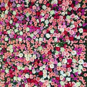Mur De Fleurs : mur v g tal de fleurs de roses et de feuillage en naturel ou en artificiel dans le d partement ~ Farleysfitness.com Idées de Décoration