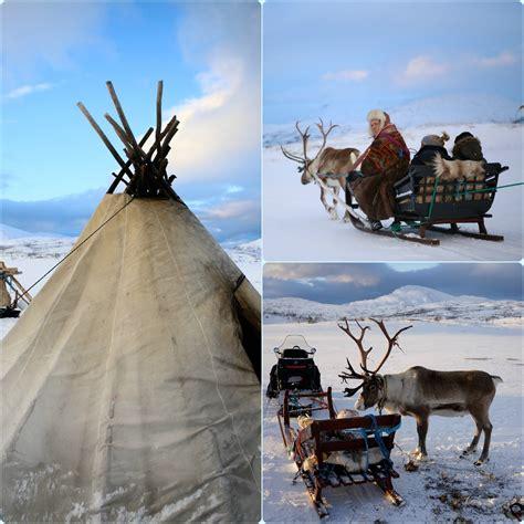reindeer sledding with troms 248 friluftsenter this world