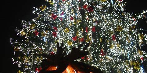 glueckliche und frohe weihnachten radio prague international