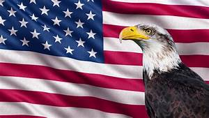 American Eagle With Animated US Flag Green Screen Video ...