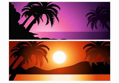 Sunset Tropical Vector Background Palm Tree Pack