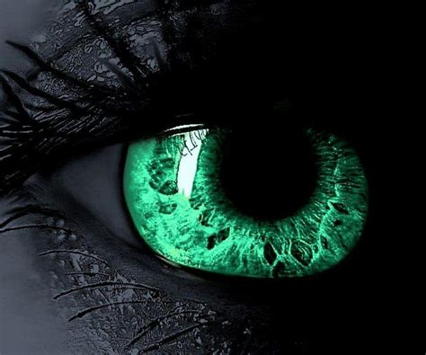 Green Eyes Wallpapers  Wallpaper Cave