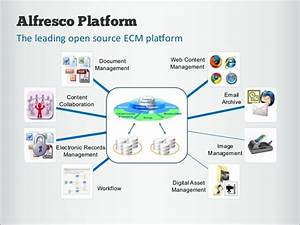 alfresco ecms group three it consultants With alfresco document management system