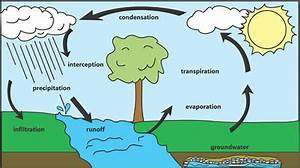 water life cycle for kids - Google Search | WATER ...
