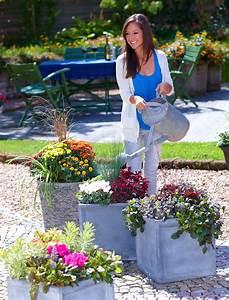 Herbstdeko Für Terrasse : herbstdeko bl tenfeuerwerk auf balkon und terrasse das ~ Lizthompson.info Haus und Dekorationen