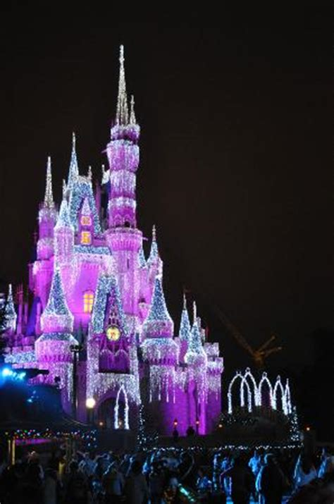 the lights picture of magic kingdom orlando