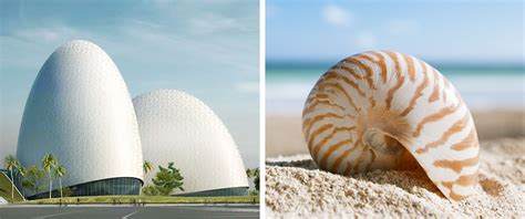nature inspired architectural masterpieces