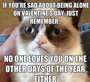 Happy Valentines Day, Everyone lol | Grumpy Cat | Pinterest
