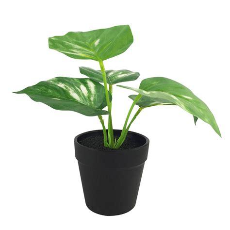 ต้นไม้ประดิษฐ์ใบเขียว LALA HOME MN06