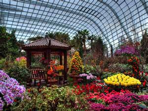 flower dome gardens by the bay singapore through my
