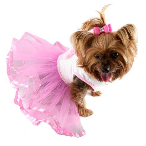 cupcake tutu dog dress cute dog clothes  glamourmuttcom