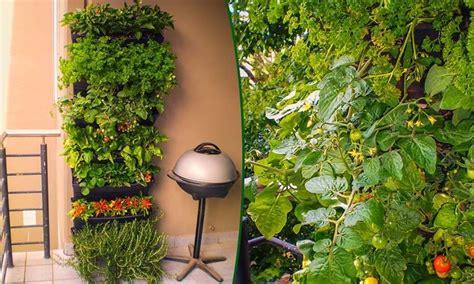 orti sul terrazzo orto verticale sul balcone orto in balcone coltivare
